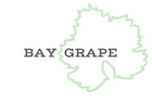 Bay Grape logo.png