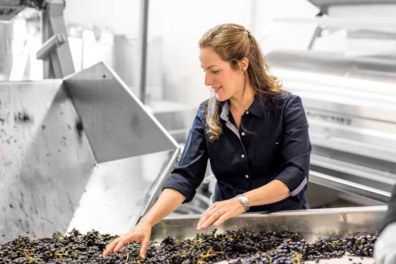 Bibiana's first vintage in California was 2004. She worked six harvests in three years, also traveling to South Africa to work harvests at Soronsberg Cellars in the Tulbagh region. Back in California, she worked at La Crema, Peay Vineyards, Au Bon Climat, and Qupé before Lynmar Estate, where she was winemaker from 2009 through early 2012. In 2012, Bibiana started her own label Cattleya Wines, as well as the Shared Notes joint venture with husband Jeff Pisoni and became a Consultant Winemaker for wineries in Sonoma and Napa Valley.  winesbybibiana.com