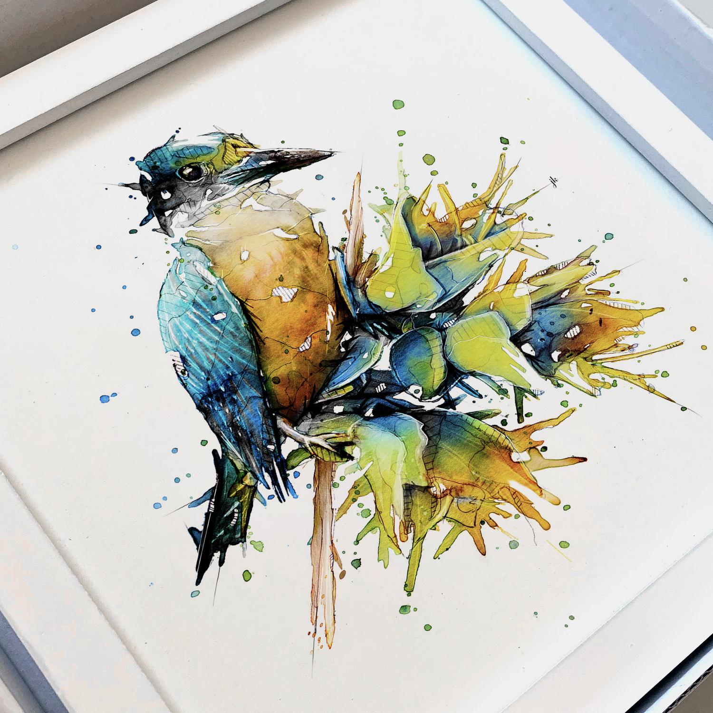 Kingfisher_Frame.jpg
