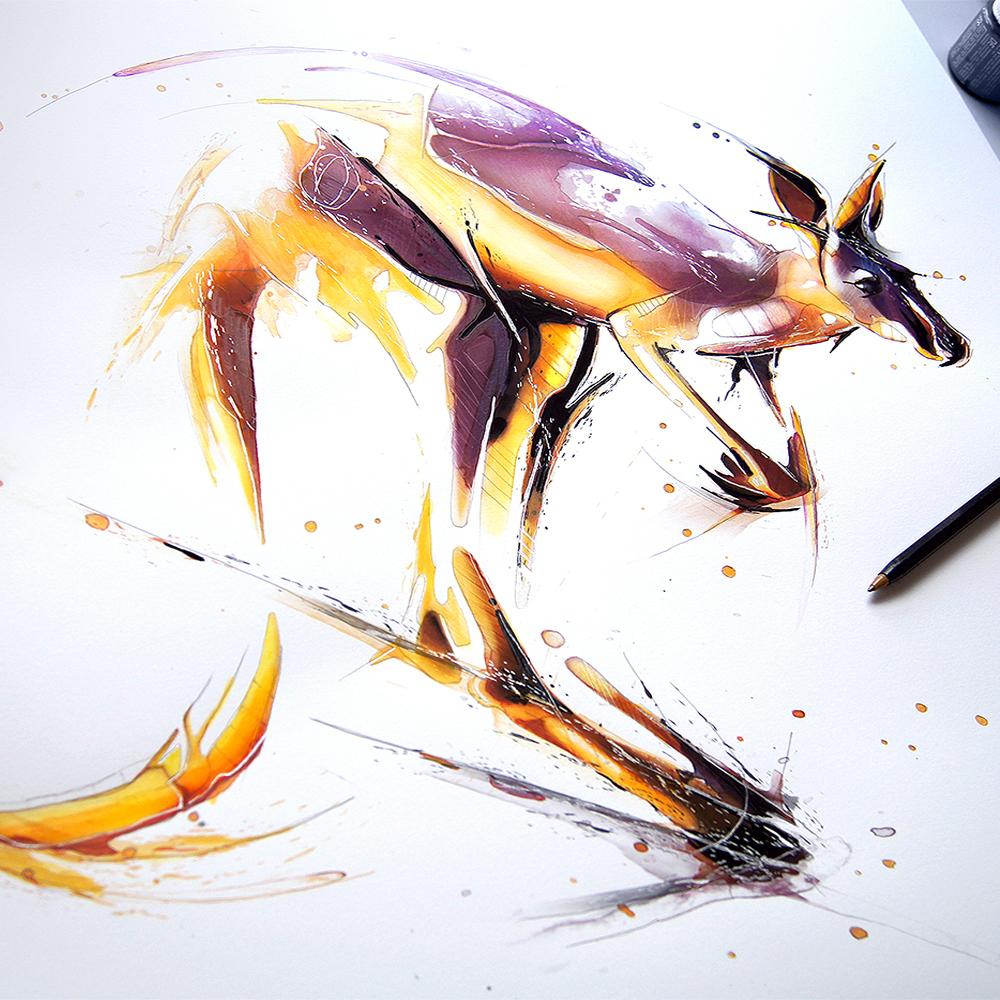 Kangaroo6.jpg