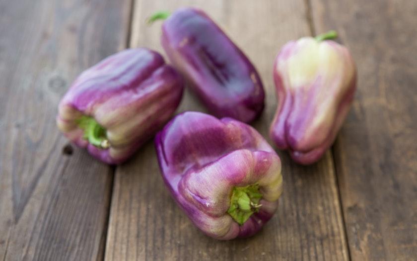 F.E.E.D. Sonoma  Organic Purple Bell Peppers  $4.99
