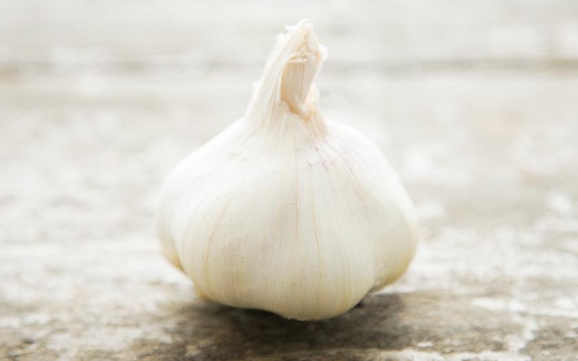 Coke Farms   Organic Garlic     $0.99