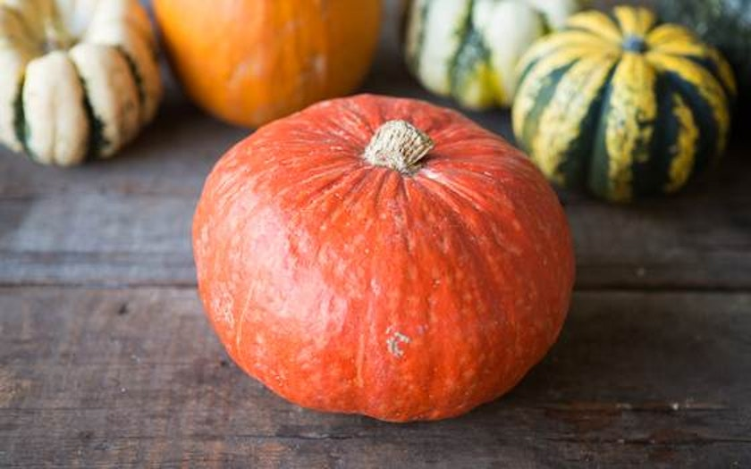 Full Belly Farm   Organic Red Kabocha Squash     $4.99