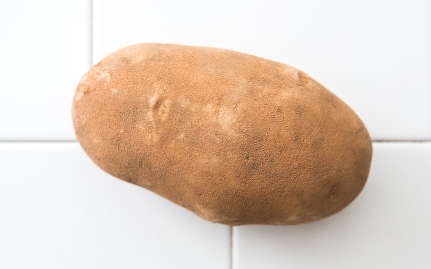 Good Eggs Produce   Organic Russet Potato   $0.79
