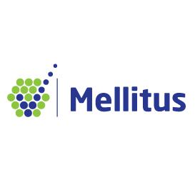 Mellitus