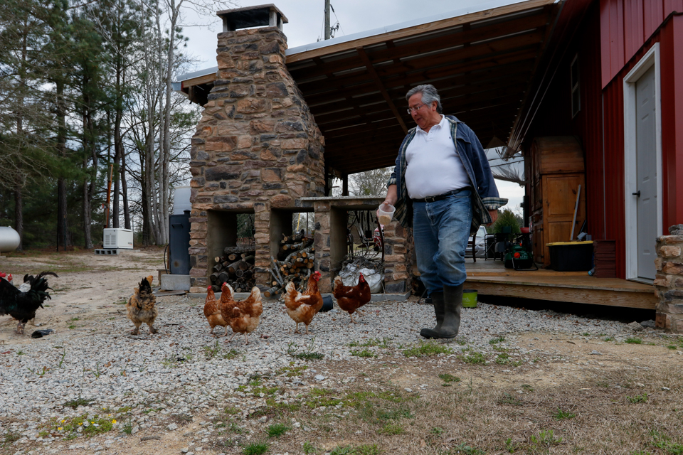 Hector Buitrago, 64, a retiree from Colombia, South America, feeds his chickens at HEMI Blueberry in Farm Greensboro, Georgia, on Friday March 23, 2018.