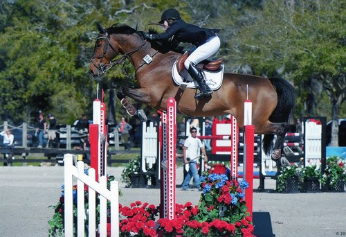 Jumper - 3rd - 2014 $7500 Colorado Horse Park Mini-Prix - Catacton4th - 2011 $50,000 EMO Grand Prix, HITS, Ocala - Ultimo2nd - 2008 $50,000 Las Vegas National CSI-W World Cup Qualifier - Cocknito CH2nd - 2008 $5,000 Brookledge Welcome, HITS, Saugerties - Cocknito CH2nd - 2008 $60,000 IHP Grand Prix of Denver - Cocknito CH3rd - 2008 $40,000 IHP Jack Daniels Grand Prix - Cocknito CH