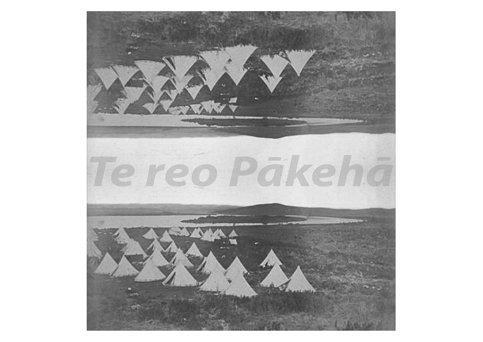 Te Reo Paakeha - reflected black and white image of white tents on grass