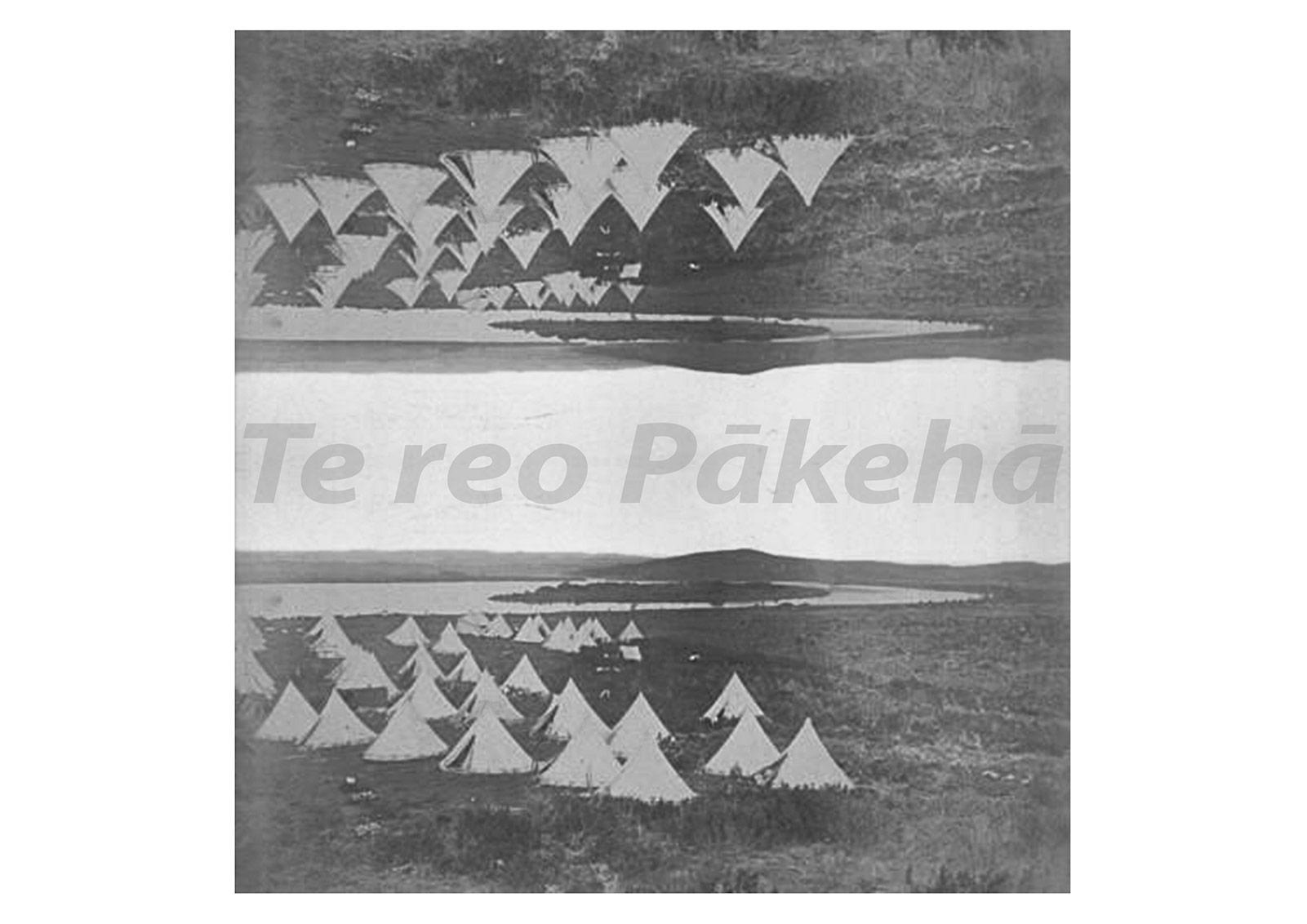TeReoPaakehaa1600.jpg