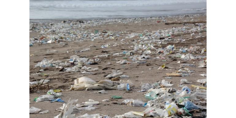 the problem with plastic - blog.jpg