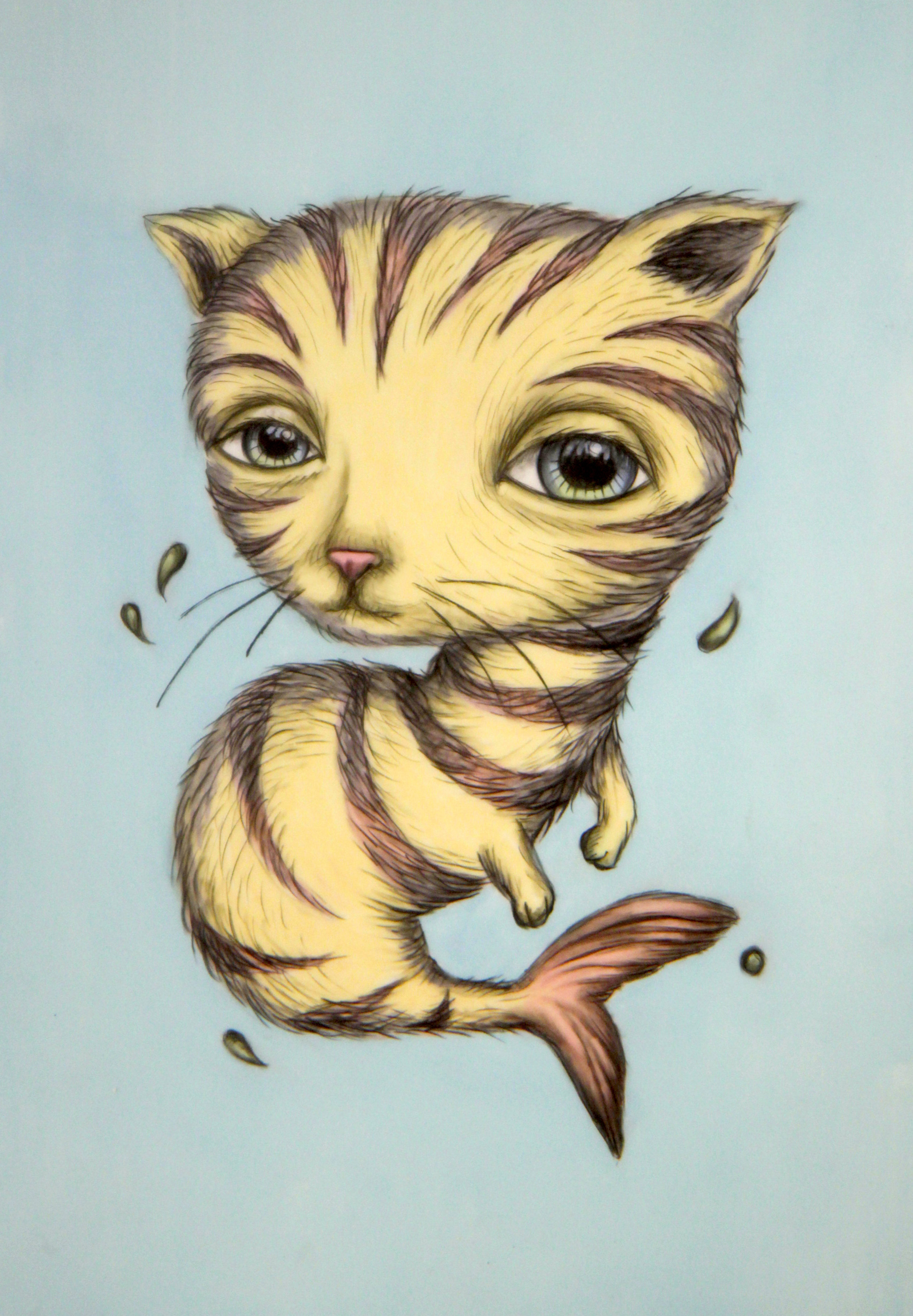 Cat Fish .jpg