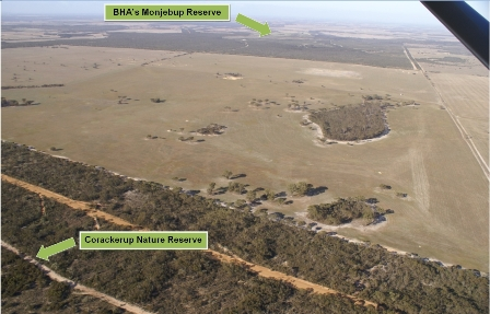 Figure 3: (click image to enlarge) Aerial image capturing the cleared areas on Monjebup North taken during a fly-over in 2009. The photo was taken from the northwest corner of the site, looking towards the southeast.