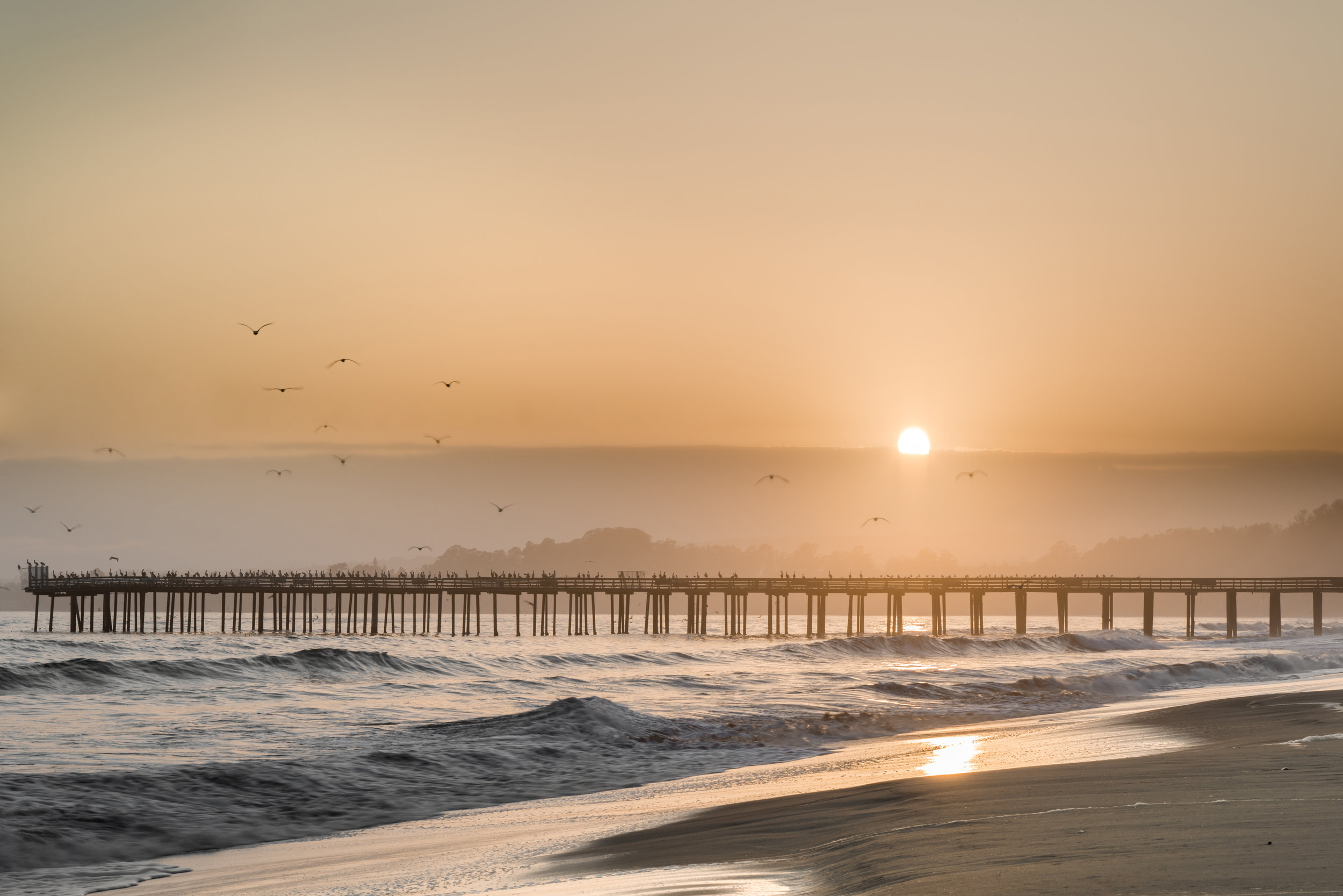 Aptos California Living Real Estate