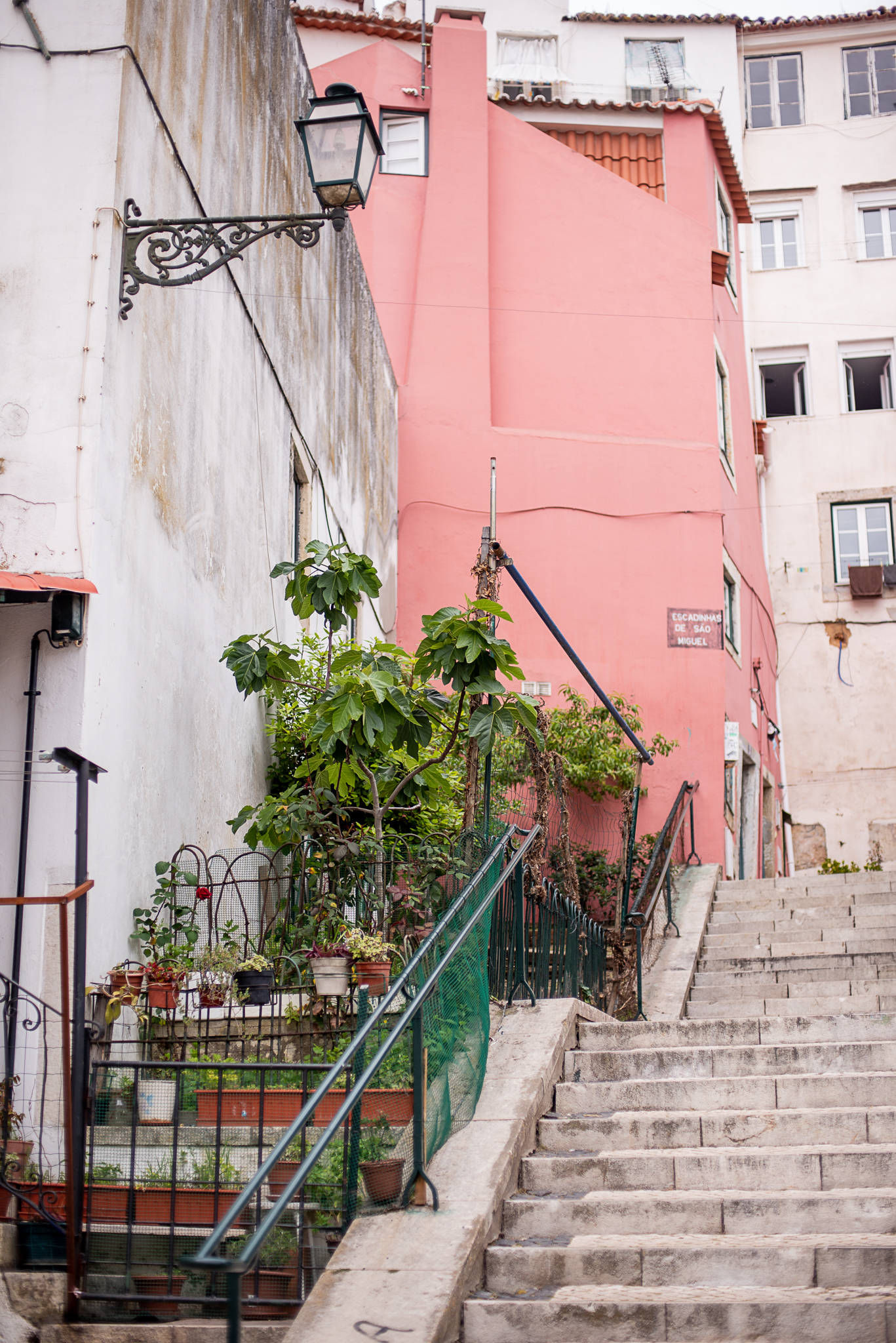 Lisbon0528VictureProd.jpg