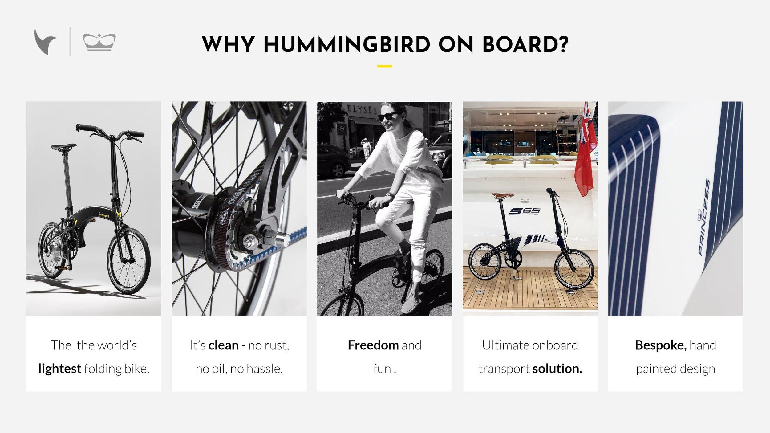 Why Hummingbird.JPG