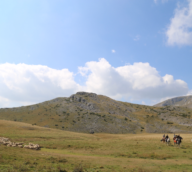 Horse riders crossing the valley.