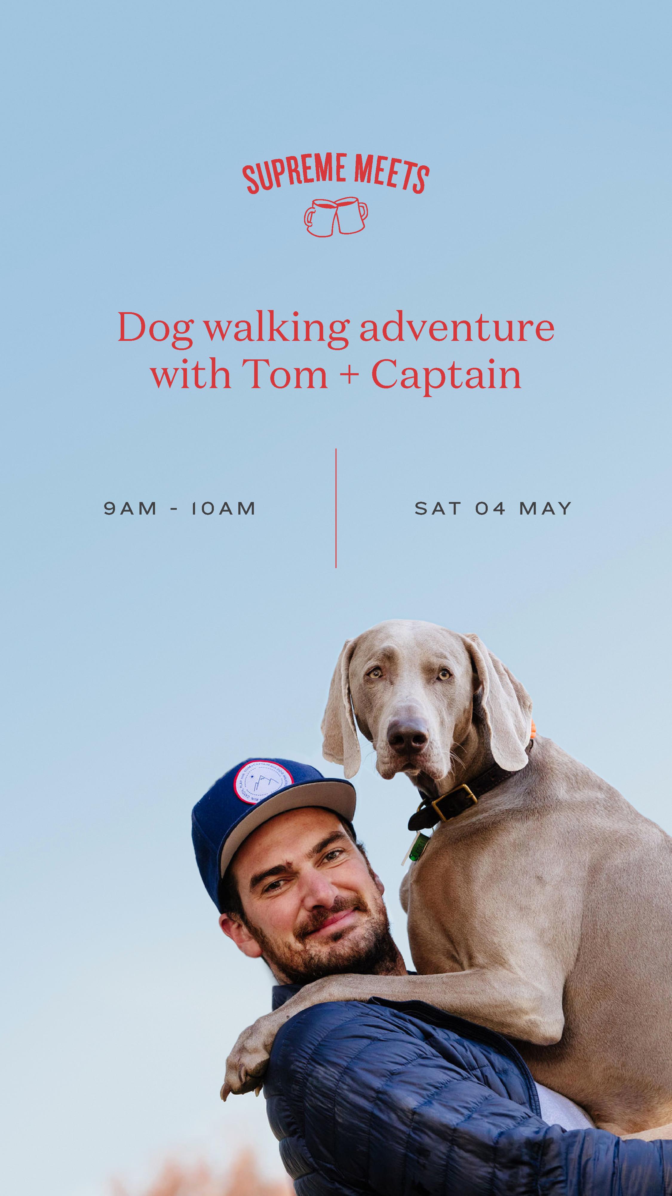 Dog Walk Meets .png