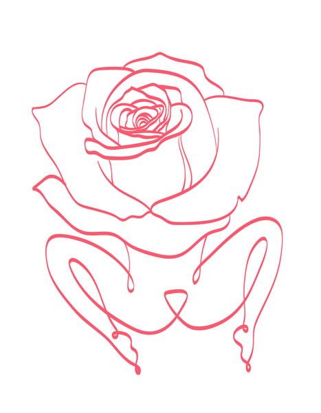 rose-fairy-3-SS.jpg