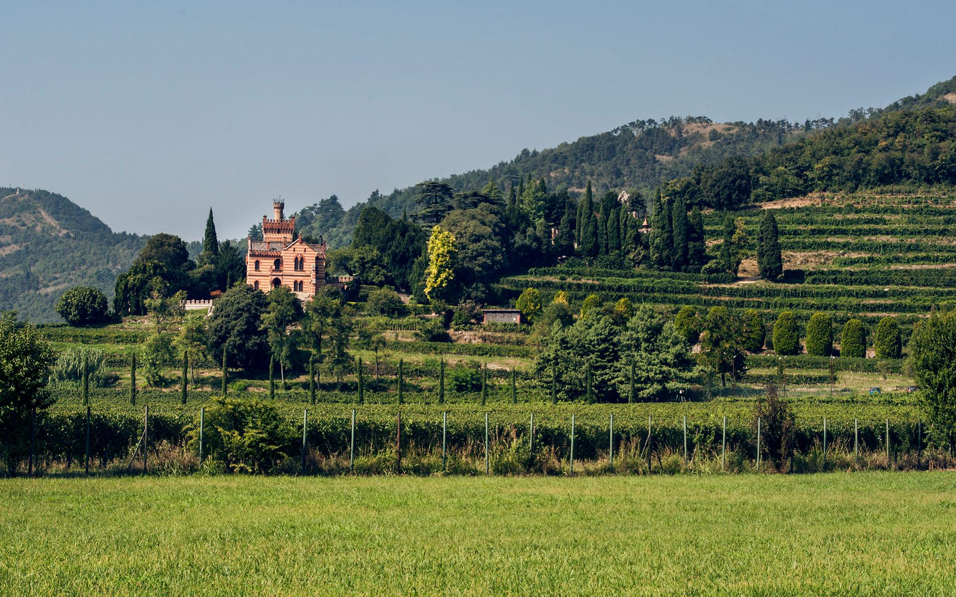 Castello-Bonomi.jpg