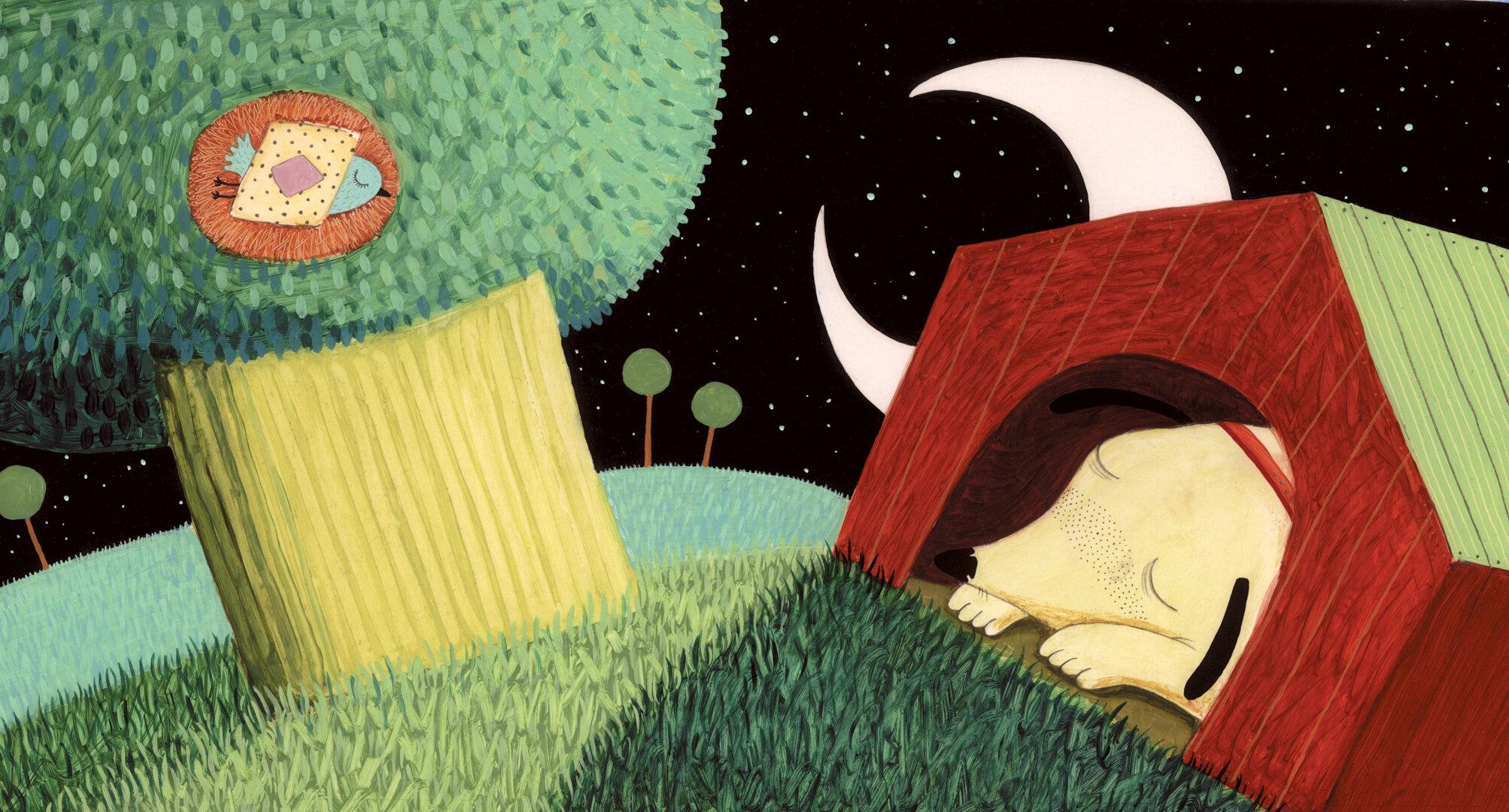 Where Birdie Lives - Childrens' Book
