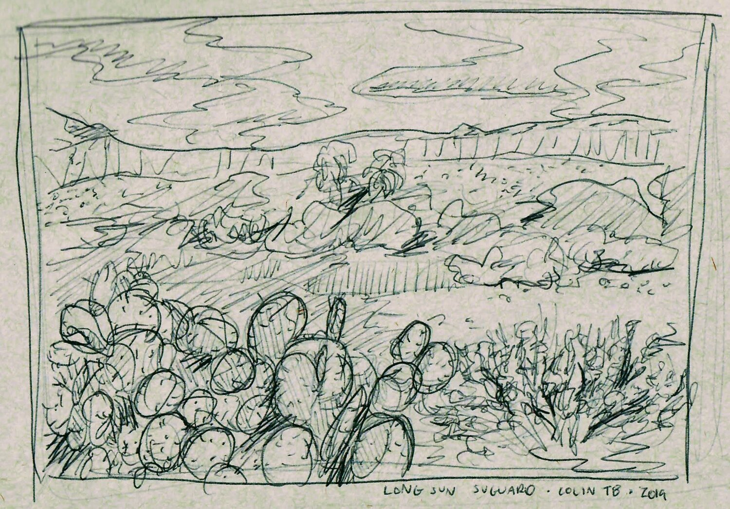 This is another sketch of some of the smaller cactus in Suguaro.