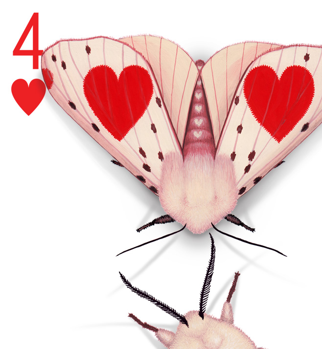 Image description; the corner of a 4 of Hearts playing card design. The design has been hand-painted with moths that look like they have evolved a wing pattern that camouflages them on the card.