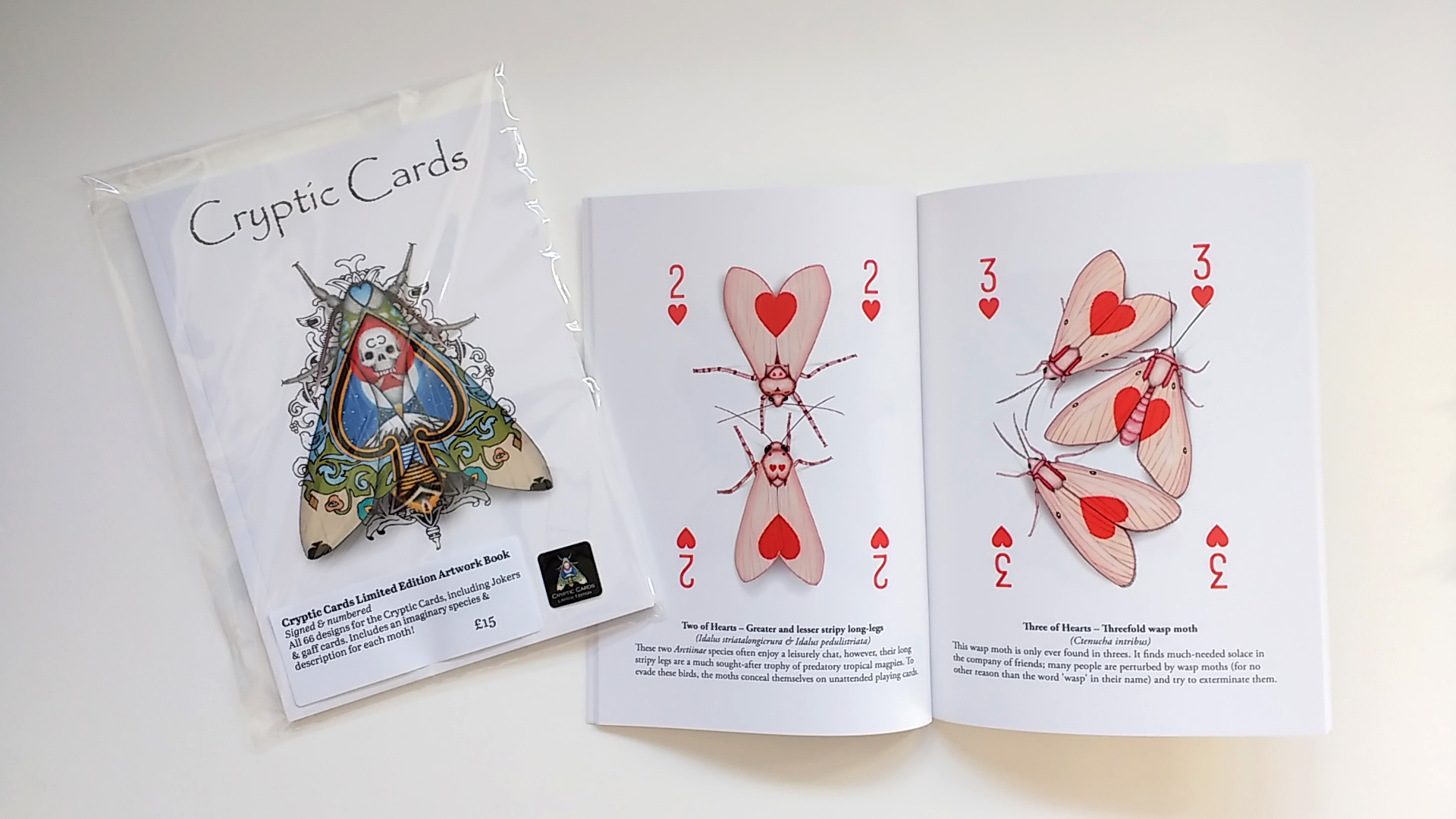The art book for the playing card deck 'Cryptic Cards'