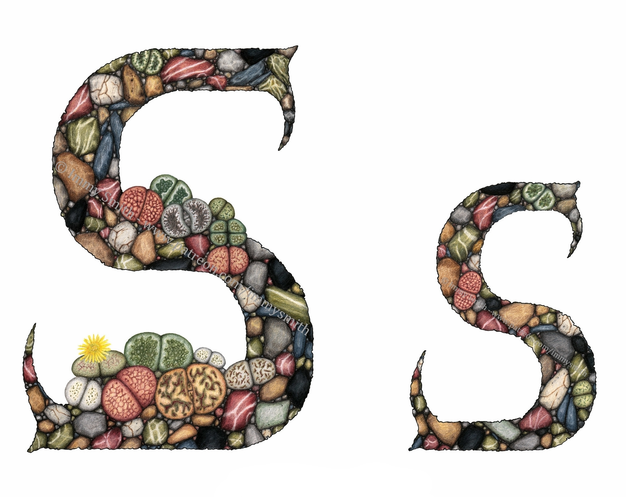 An illuminated pair of letter S's, filled with a pattern of small stones and stone plants (lithops species) in shades of greys, browns, olive and earth greens, maroon, and slate blue