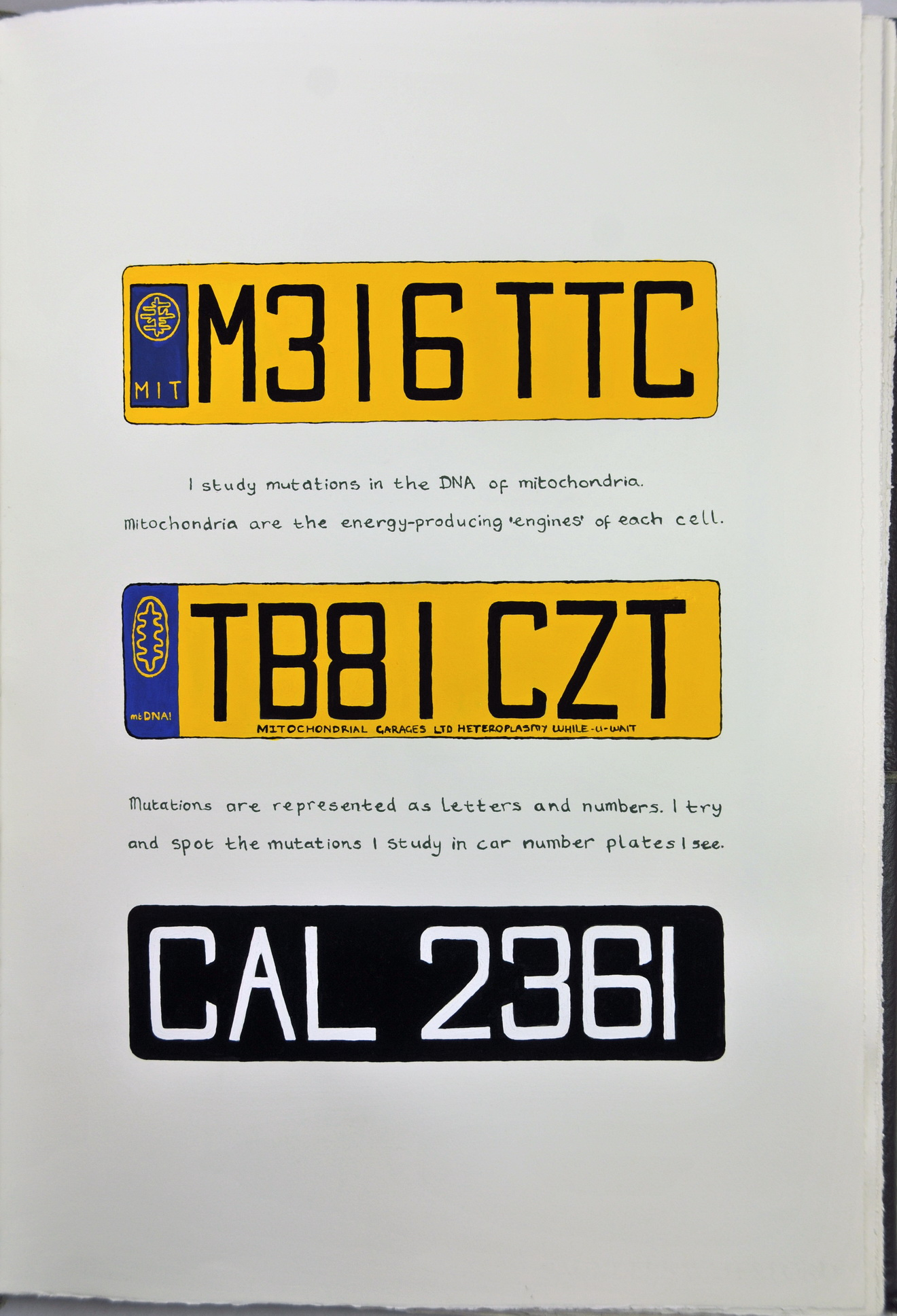 08_Chp2-The-Art-of-Travel_P2_Number_Plates_resize.jpg