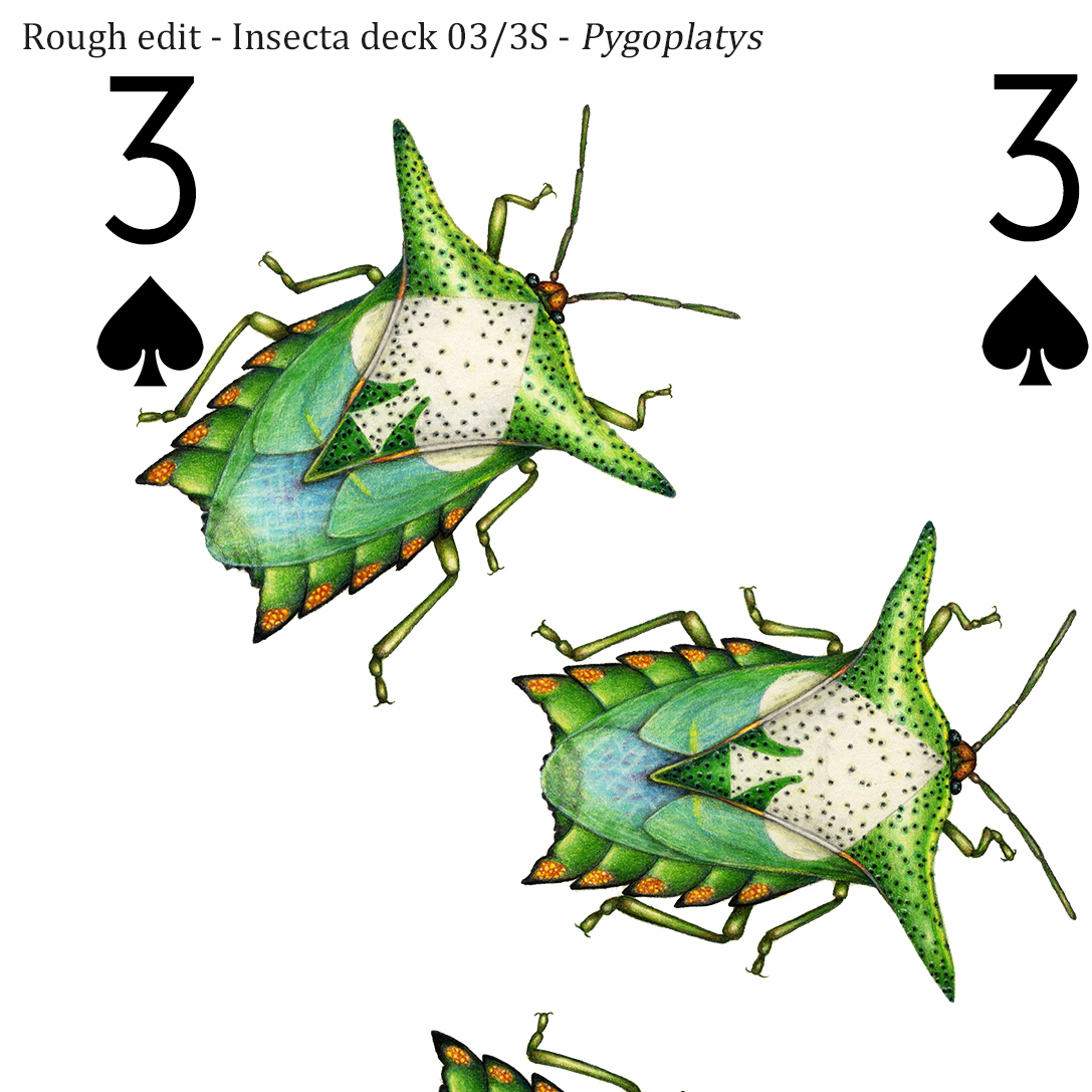 Image description; the corner of a 3 of spades playing card design made in colour pencil. It features 3 green and blue shield bugs, each with a white spade symbol on it's back.