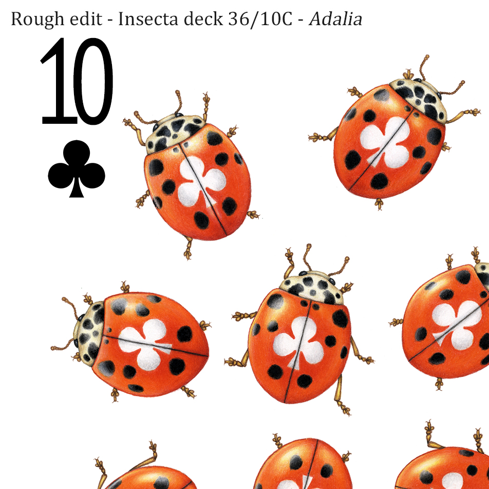 Image description; the corner of a ten of clubs playing card design made in colour pencil. It features 10 red and black ladybirds, each with a white club symbol on it's back.