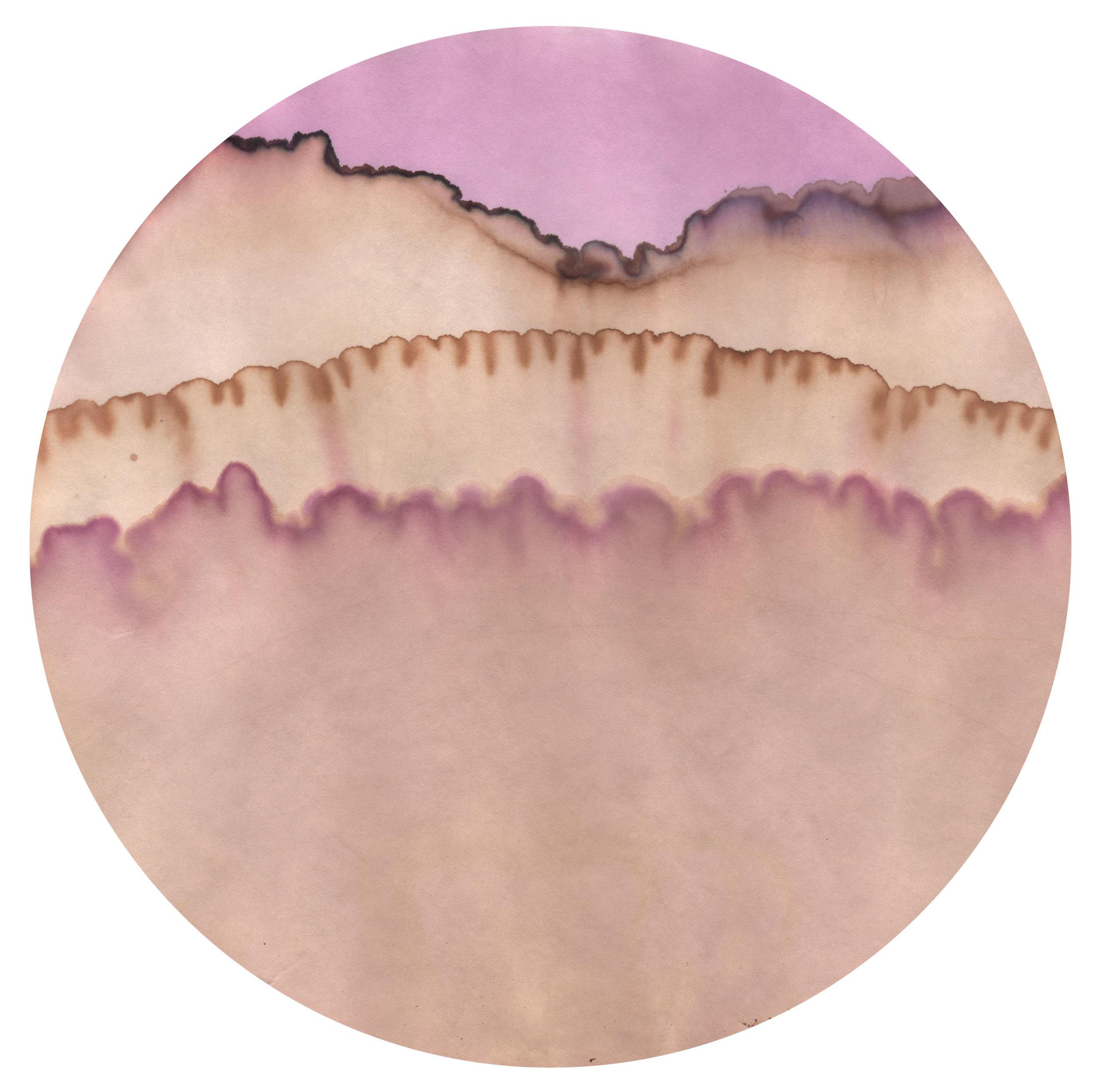 chromoscape10sml.jpg