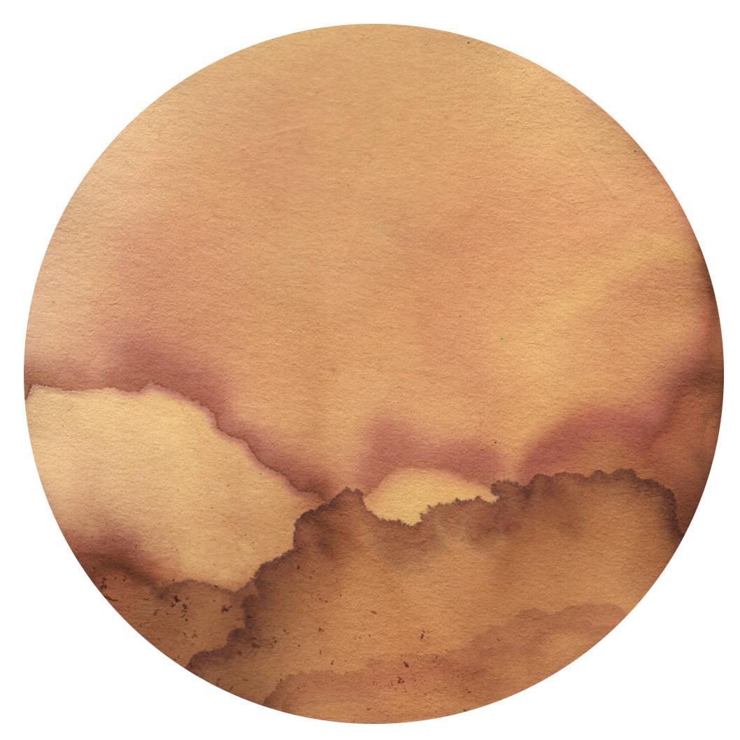 chromoscape13-5.jpg