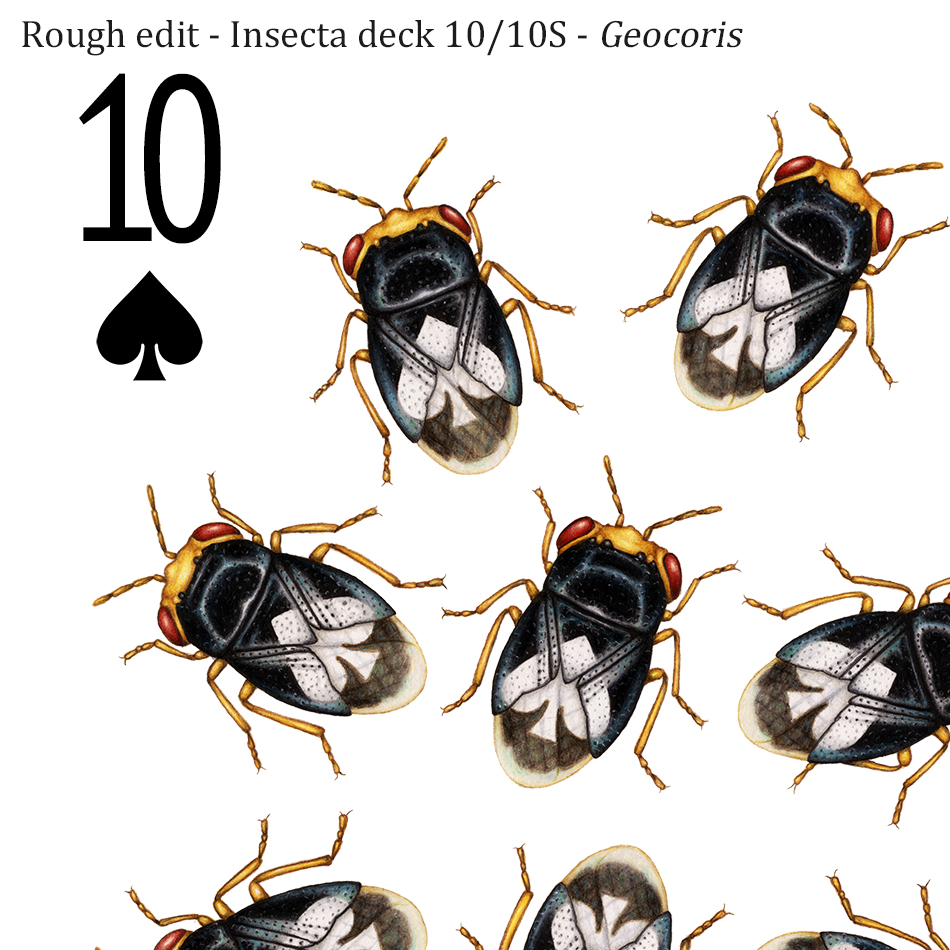 A 10 of spades playing card design, featuring 10 black big-eyed bugs, each with a white spade symbol on its back.