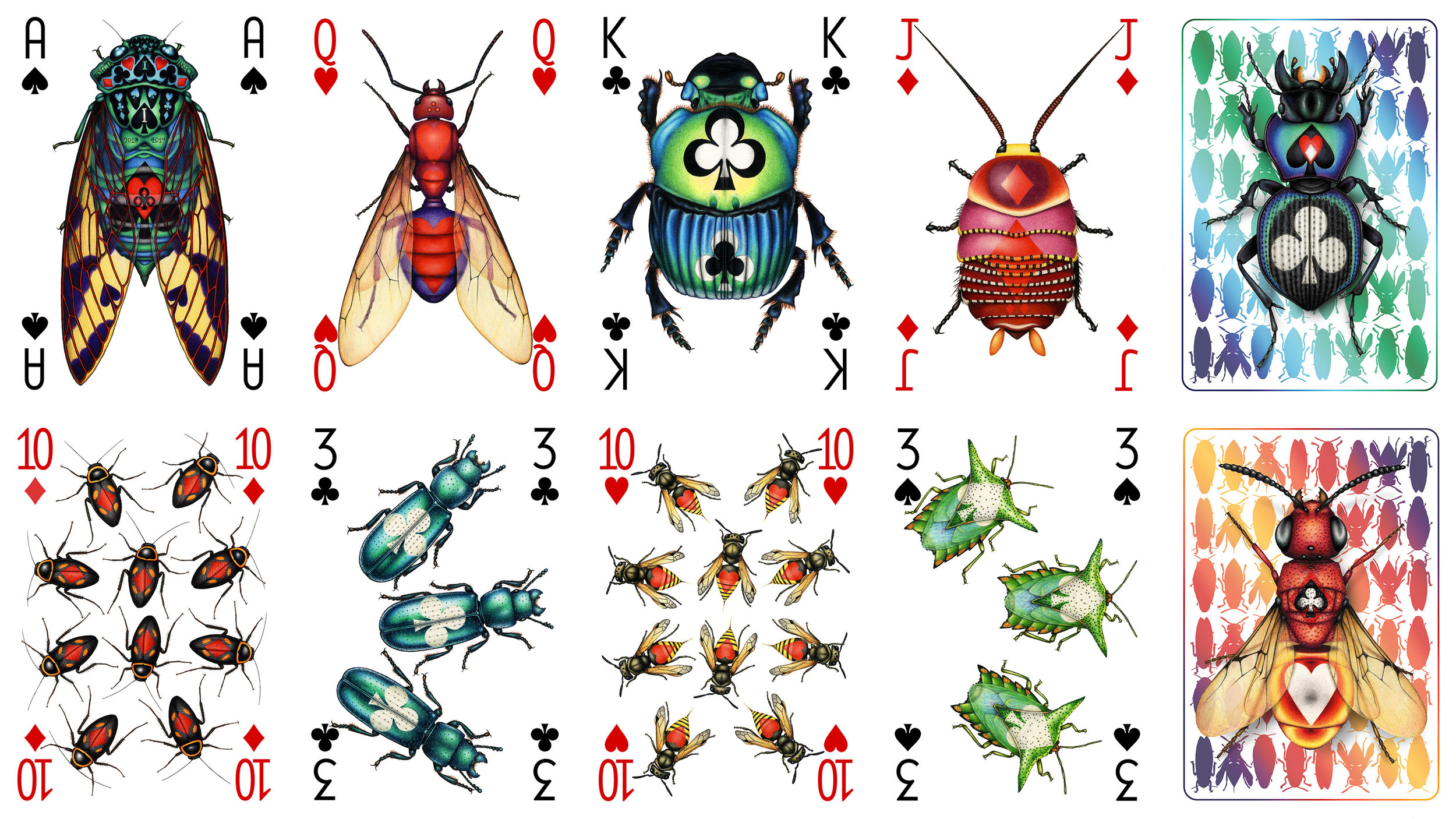 Designs from my next entomological poker deck, where different taxonomic orders of insects carry suit symbols