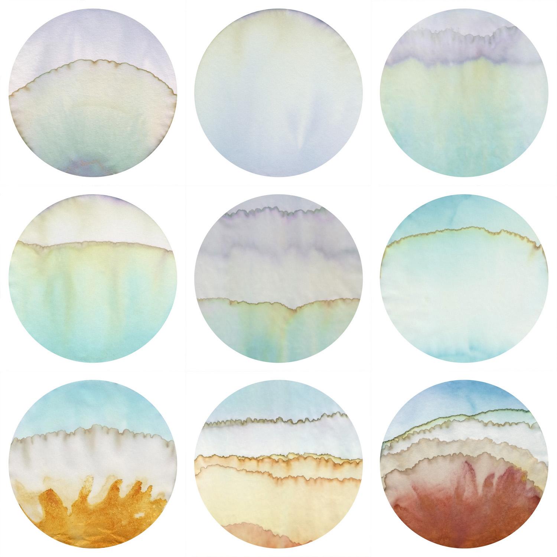 Crocus Collage 3 web.jpg