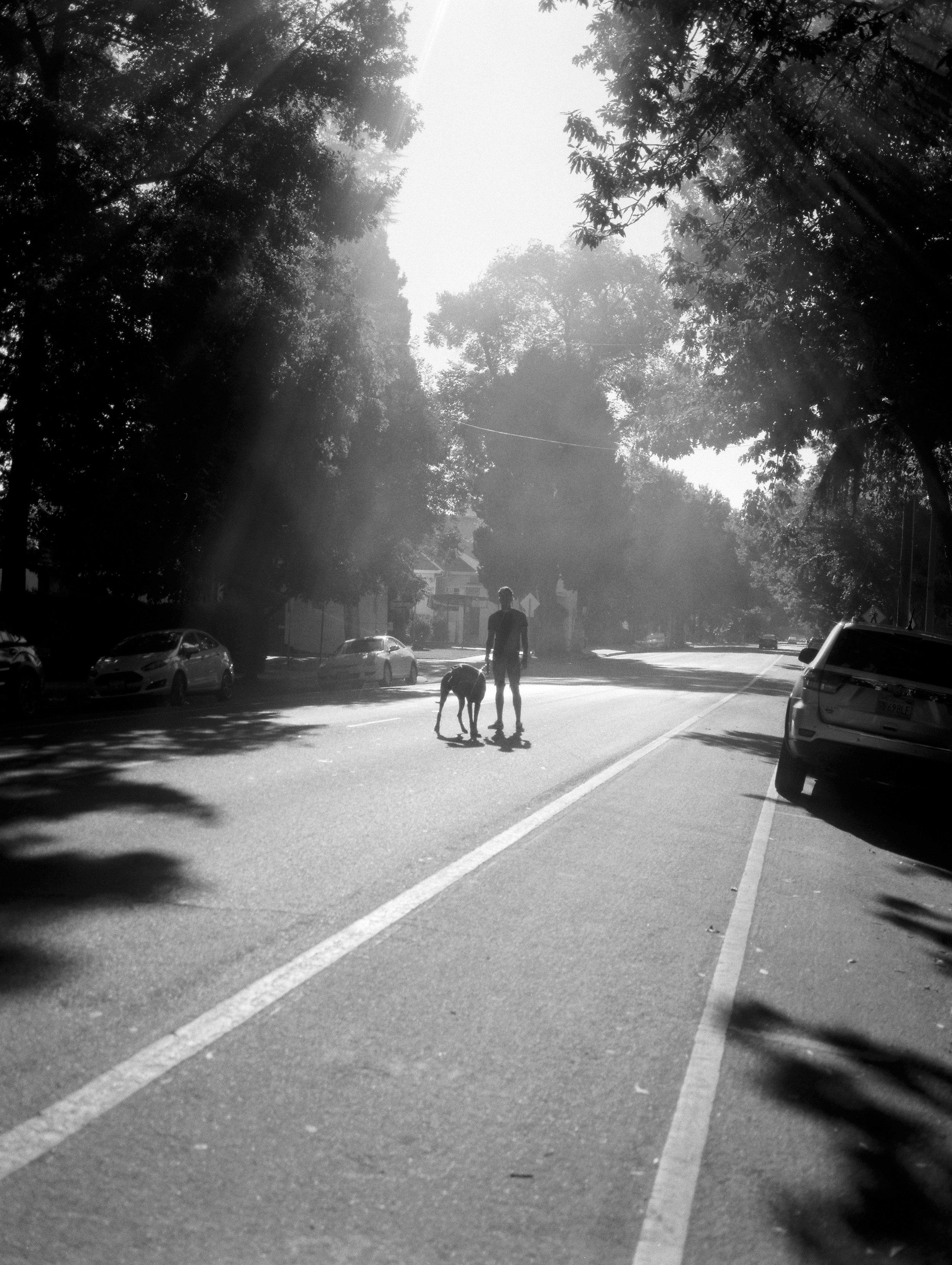 southsidepark-sacramento-family-photography by Rachel Sima Photography