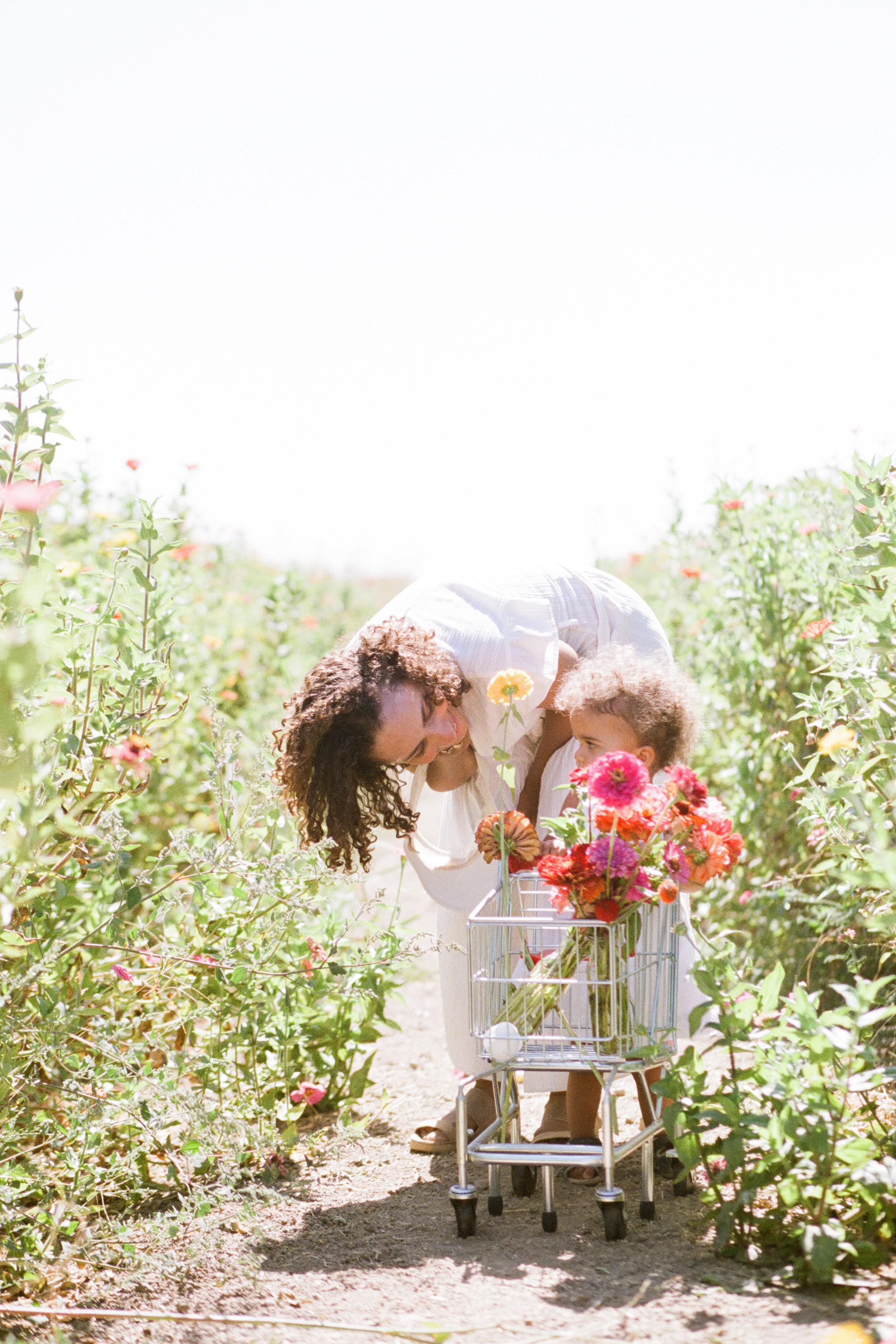 california-norcal-family-photographer-woodland-flower-girl by Rachel Sima Photography
