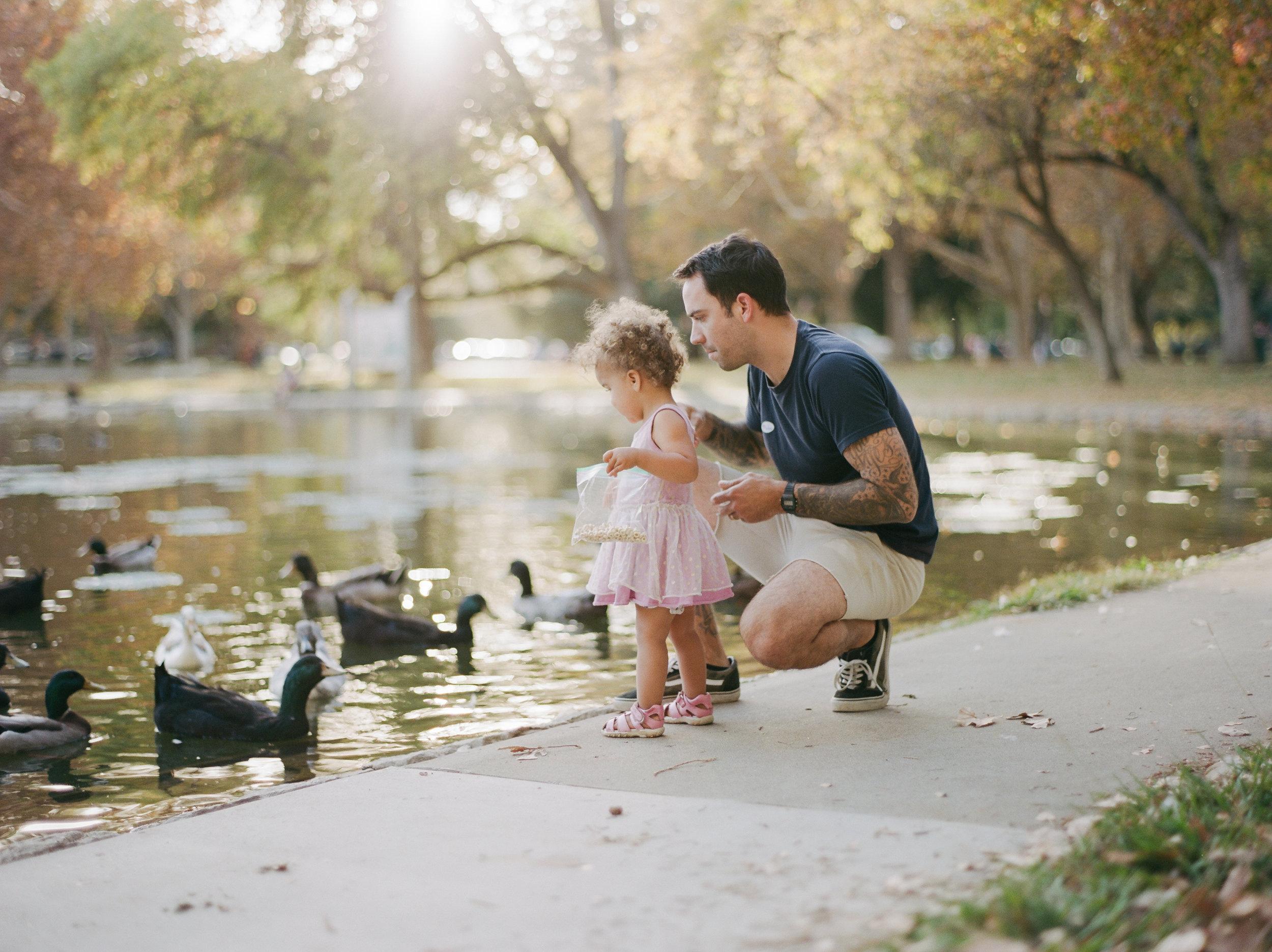 duckfeeding-1.jpg