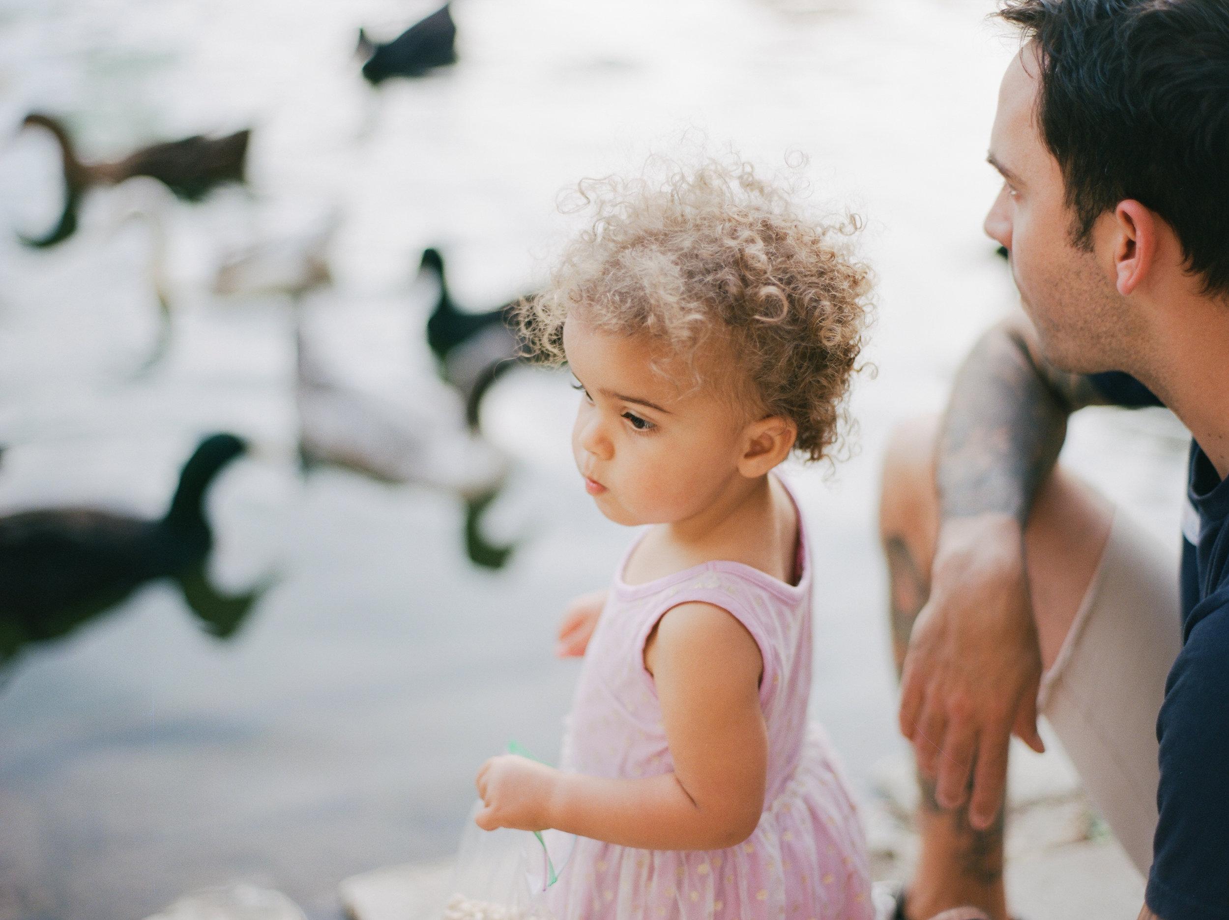 duckfeeding-2.jpg