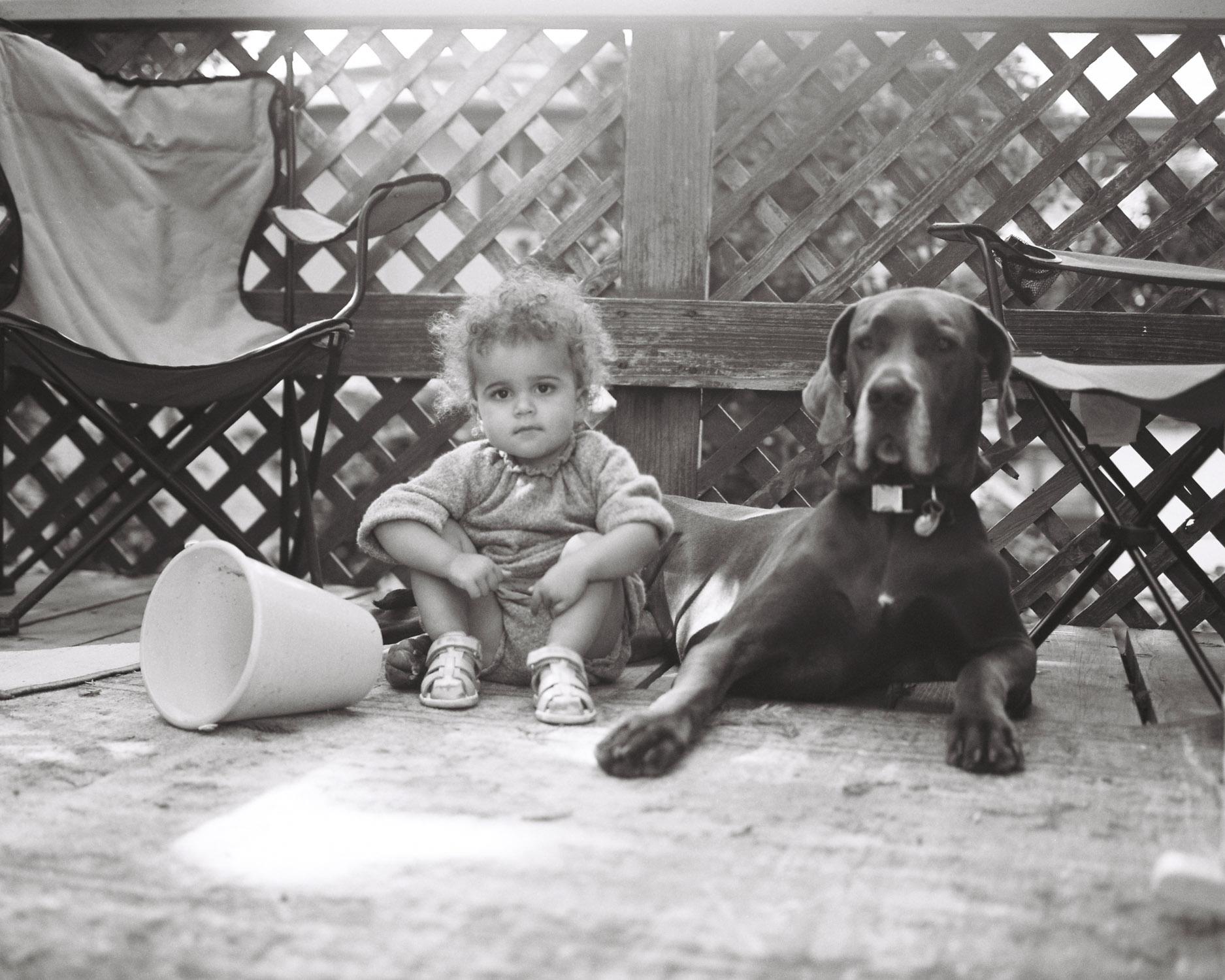 girl and great dane on film in california rachel sima photography