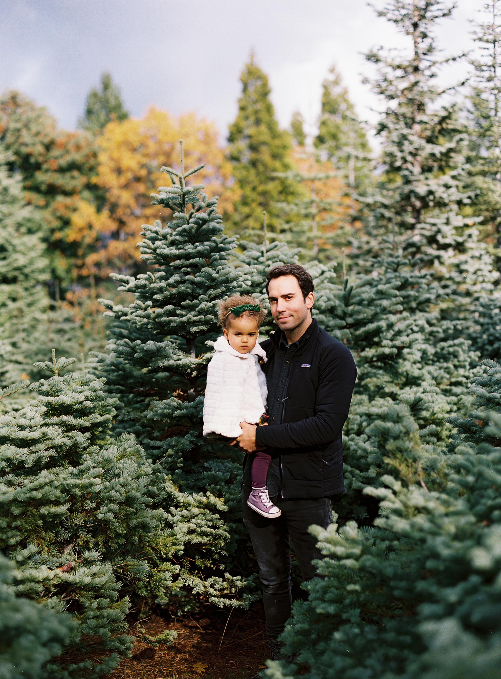 Christmas Tree Farm film photography by Rachel Sima Photography