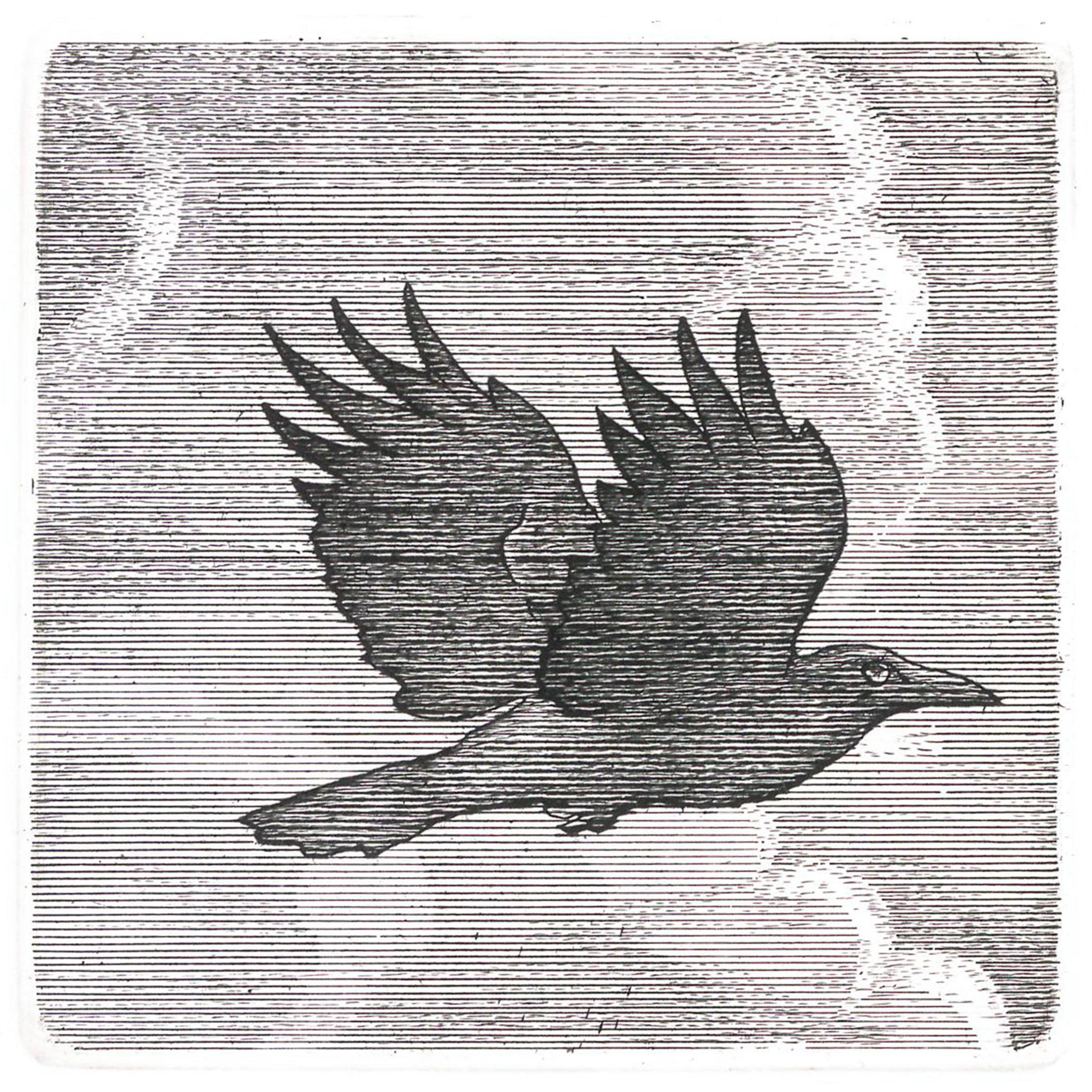 Crow (2018)