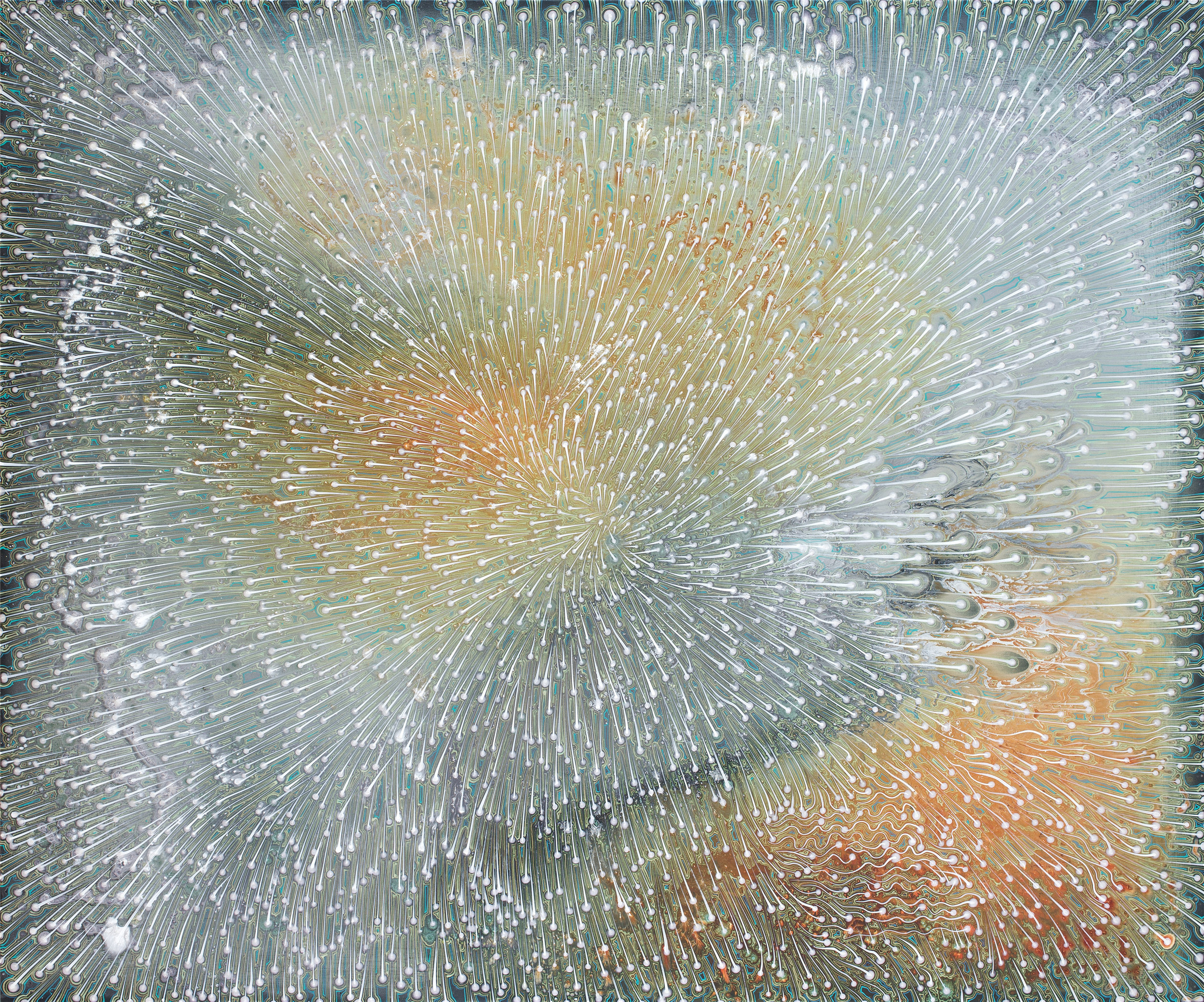 Barbara Takenaga,  Outset ,   2017, acrylic on wood panels, 20 x 32 inches