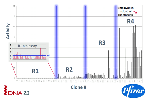 Figure 2: Multifactorial optimisation of the primary sequence of a biocatalyst (four iterations, reproduced with thanks to DNA2.0)