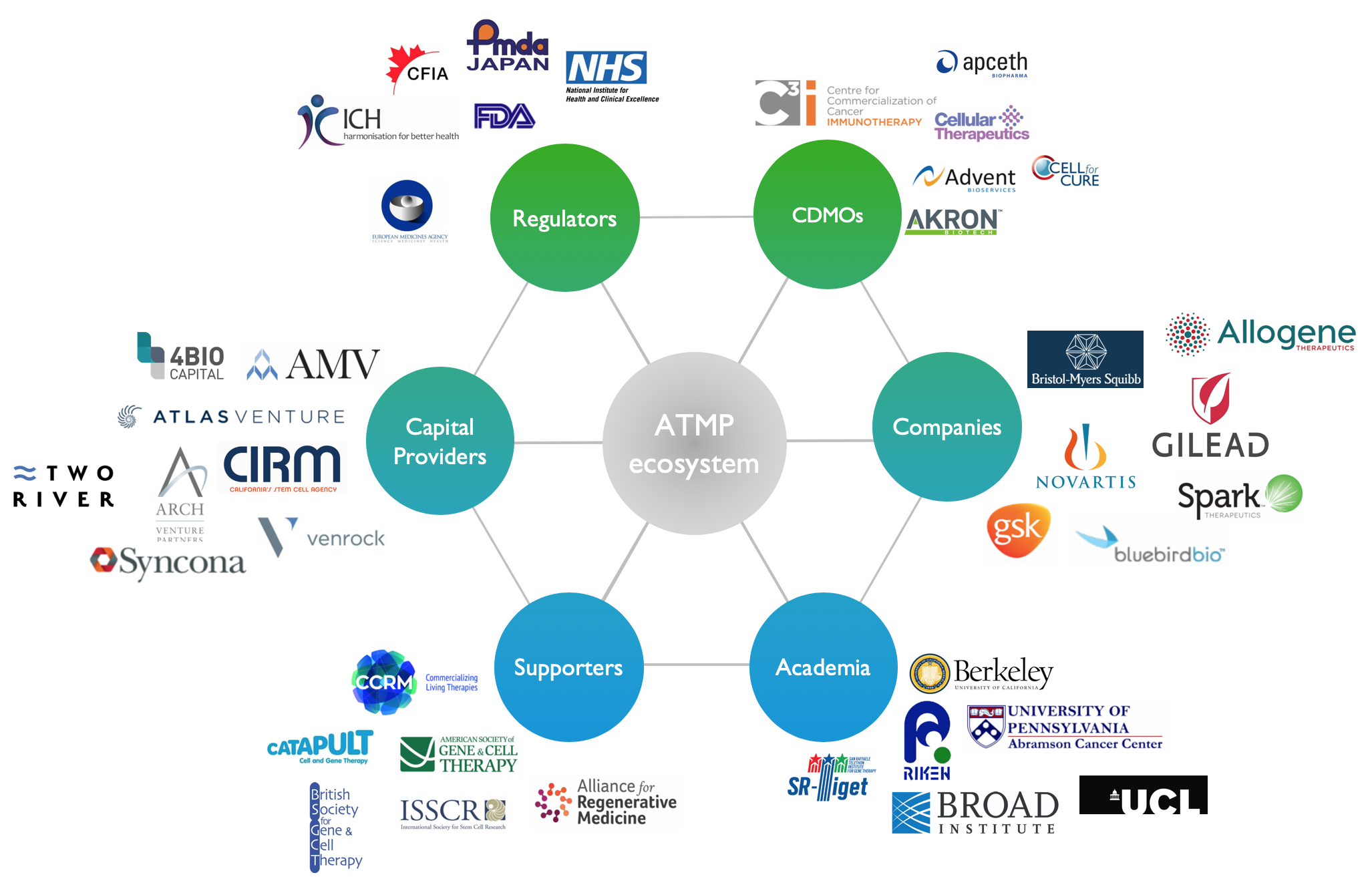 Figure 1.  A snapshot of some of the supporters of the global ATMP ecosystem.