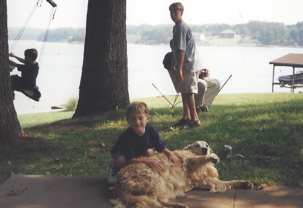 Golden Retriever laying near a lake in Virginia