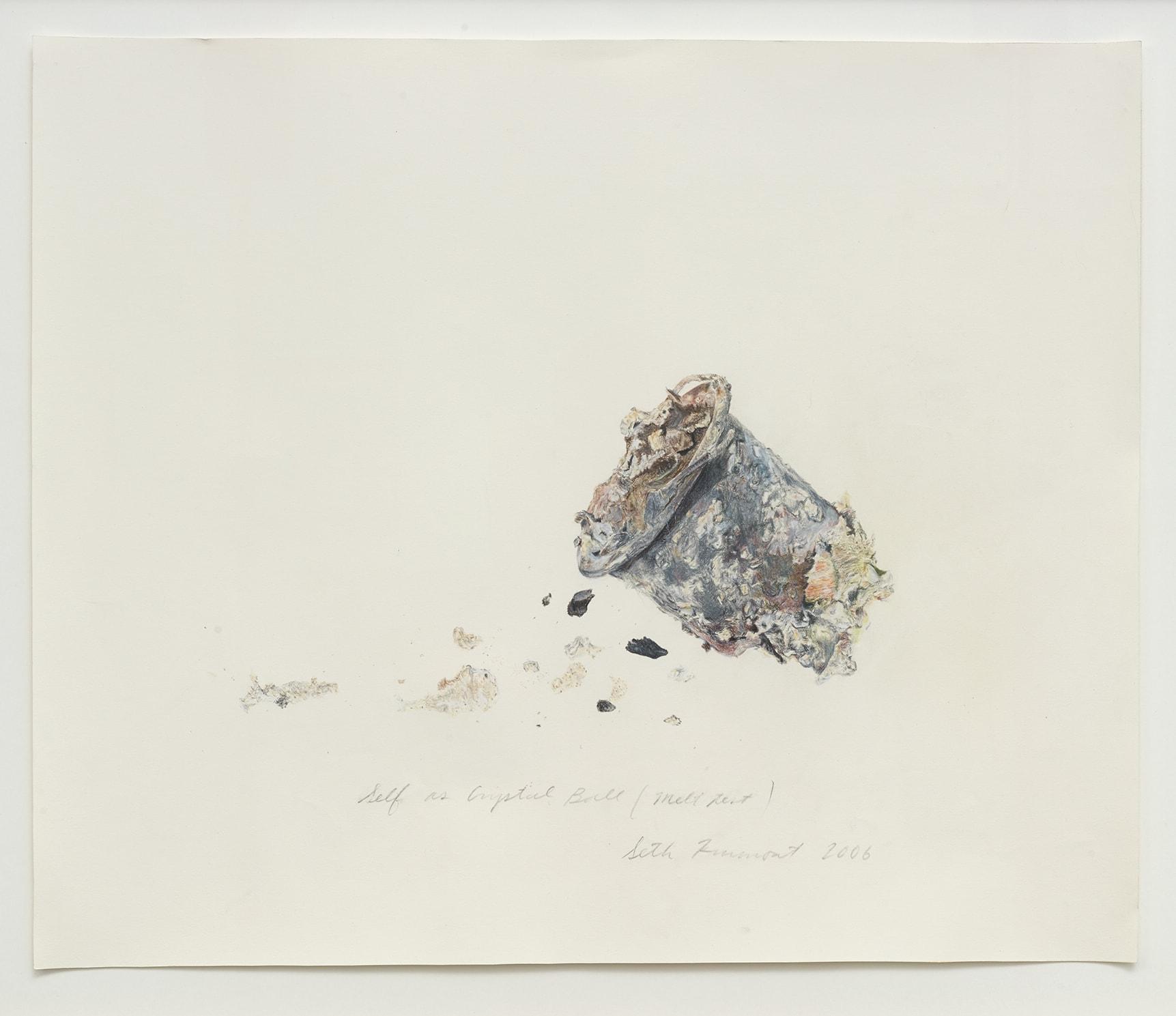 self as crystall ball (melt test), 2006