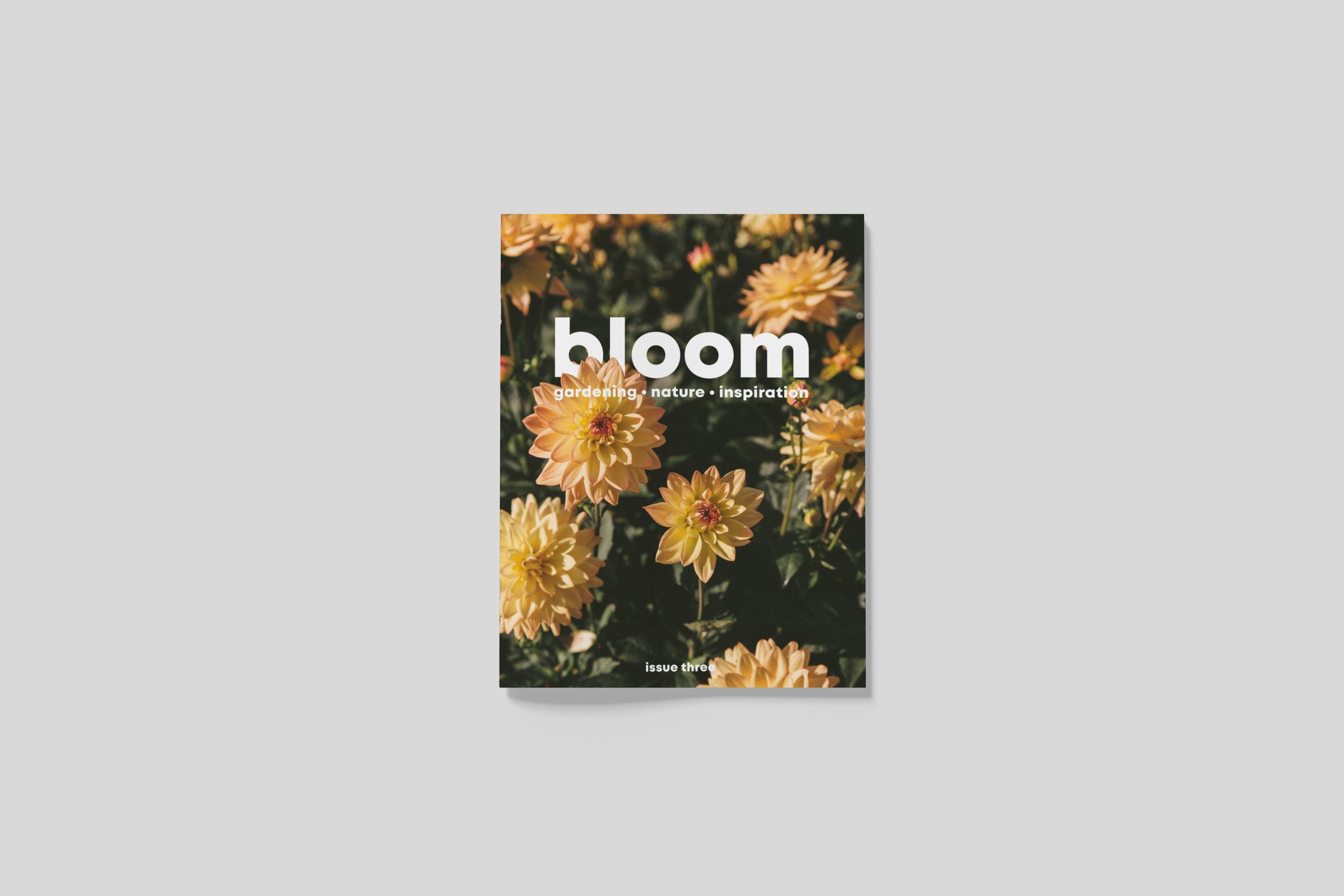 BloomIssue3_front_01.jpg