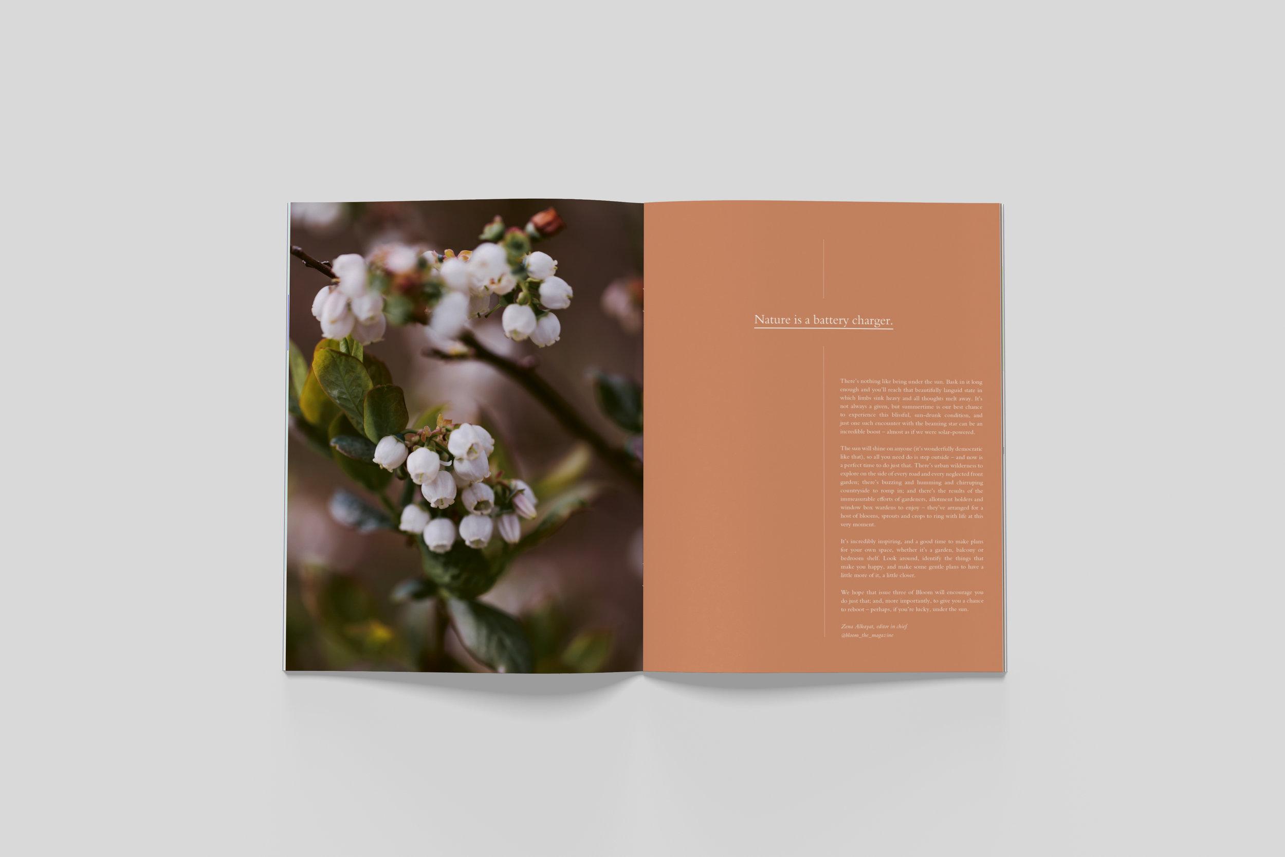 BloomIssue3_spreads_01.jpg